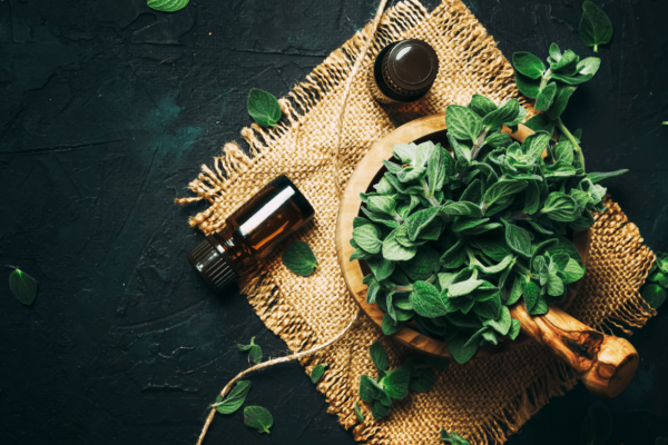 How to Make Oregano Oil