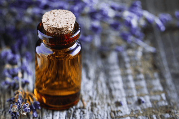 Where to Apply Essential Oils for Blood Pressure
