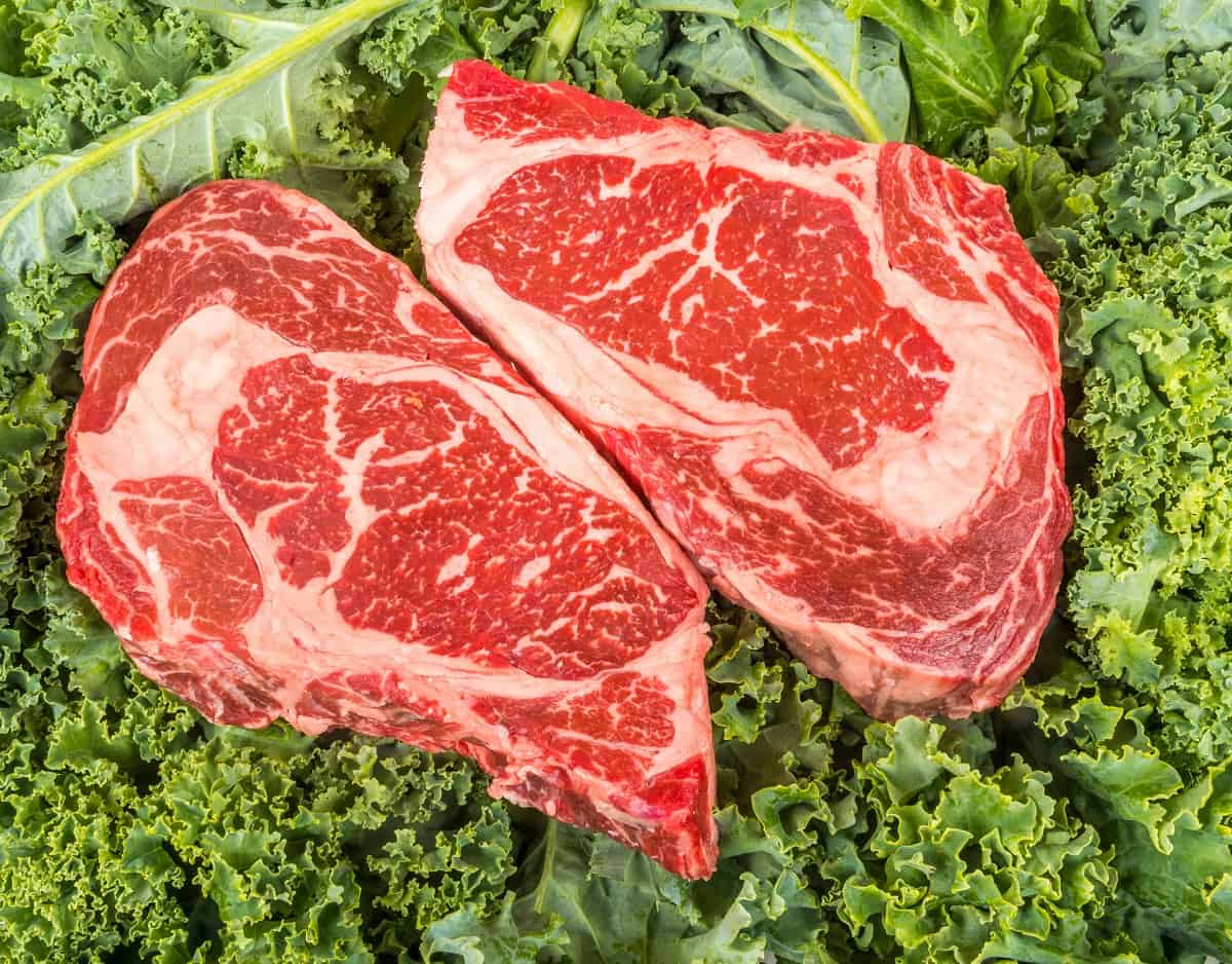 Let us Compare the Protein in Kale and Beef