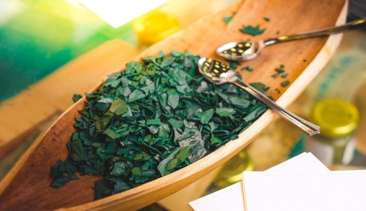 How to Grow Spirulina At Home