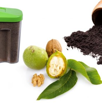 How to Use Black Walnut Powder