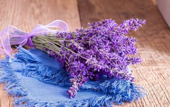 What To Do With Lavender Flowers