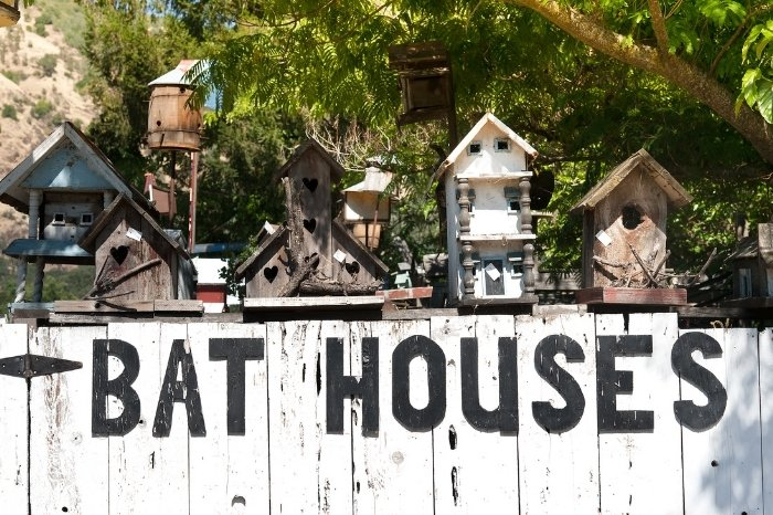 What Are Bat Houses
